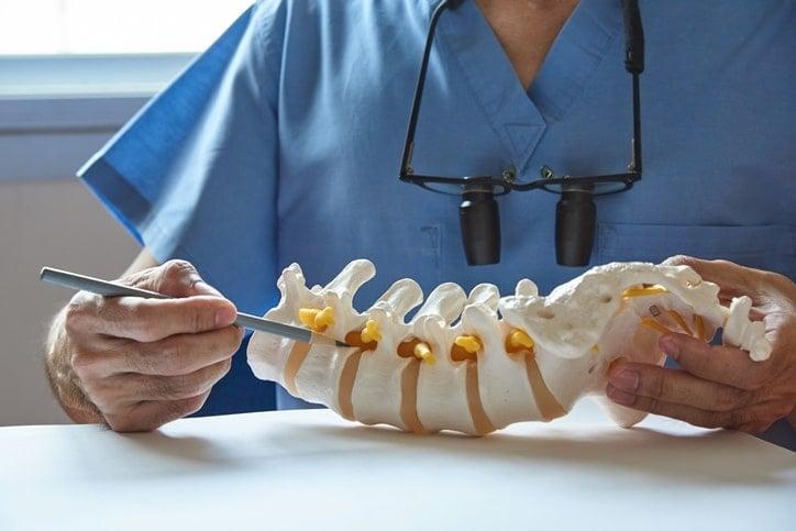 study of bones