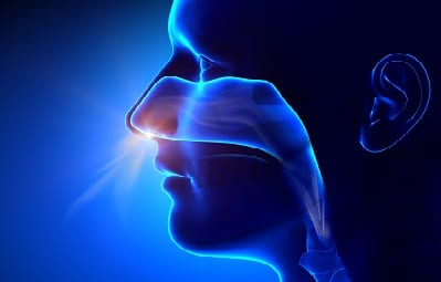 Why You Might Need A Sinus Lift Prior To Getting Dental Implants